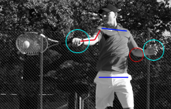 Anatomy & Biomechanics Forehand